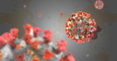 Parte de Epidemiología 29 de Junio: No se registran nuevos casos en la provincia